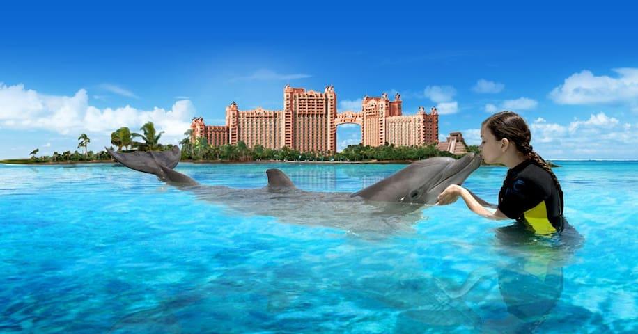 Villa for 4 @ Atlantis Harborside: JULY 3-10, 2020