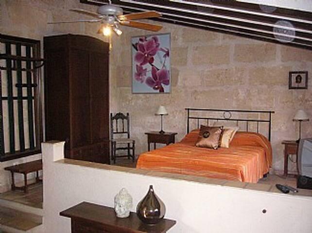 Ferienwohnung Studio Finca Libertad Mallorca SCV - Campos - Appartement