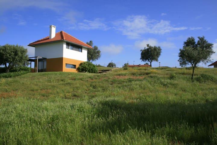 Casa a Oliveira, heerlijk huis-verrassend verblijf