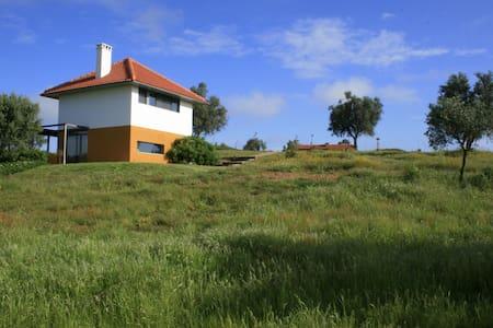Casa a Oliveira, heerlijk huis-verrassend verblijf - Aldeia do Rouquenho, Ferreira do Alentejo - Haus