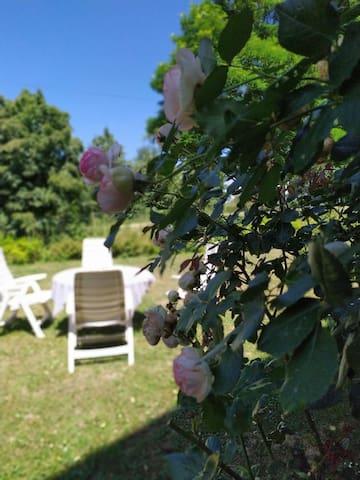 Jardin réservé au gîte
