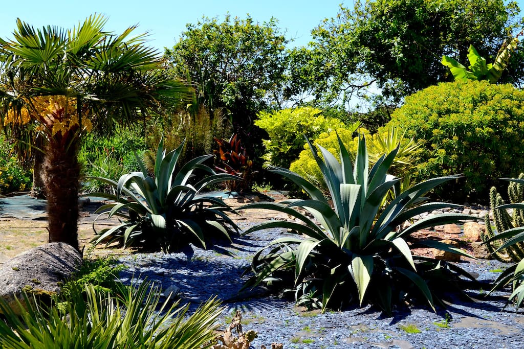 Jardin exotique du Nid d'Iroise