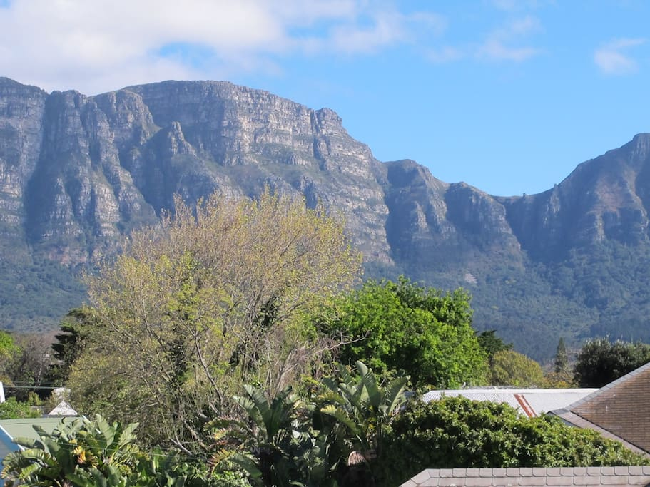 Stunning view of eastern slopes of Table Mountain and Devil's Peak