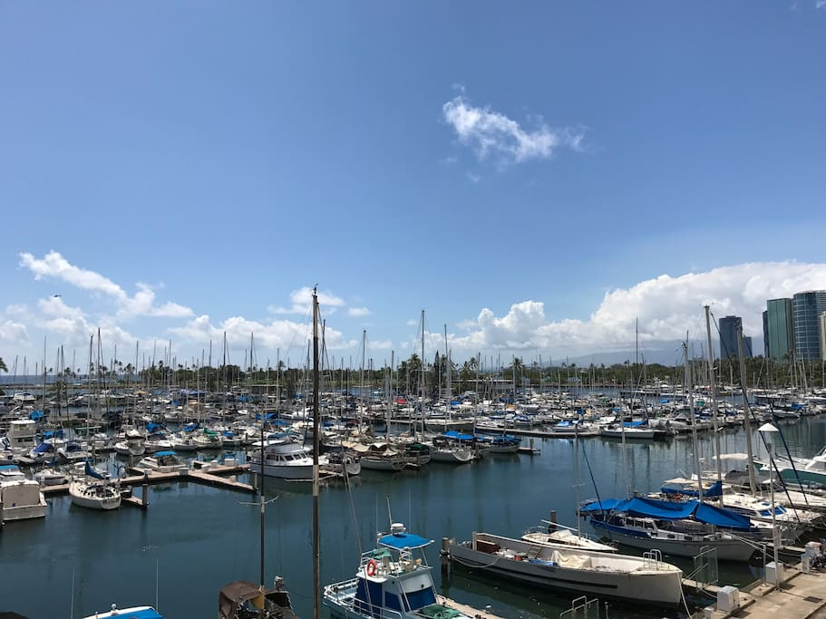 180 degrees view of the marina, you get the blowing trade winds!