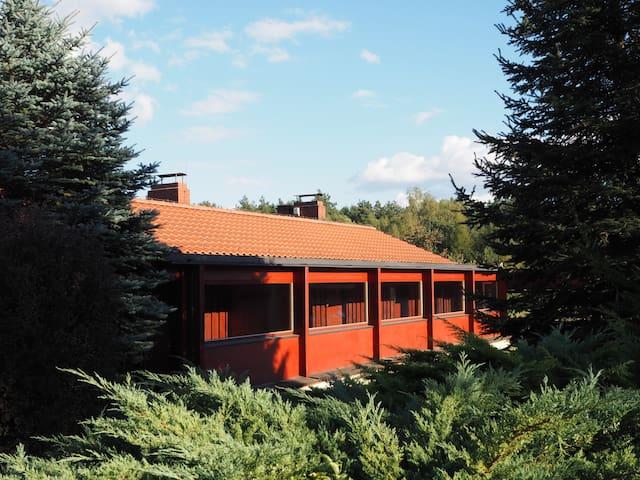 Drewniany Pawilon na leśnej polanie
