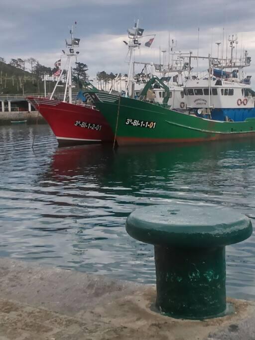 Puerto Lekeitio