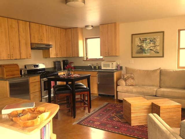 Lovely Custom Built & Modern One Bedroom Apartment - Carbondale - Apartment