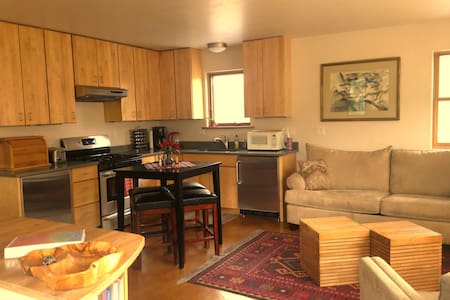 Lovely Custom Built & Modern One Bedroom Apartment - Carbondale