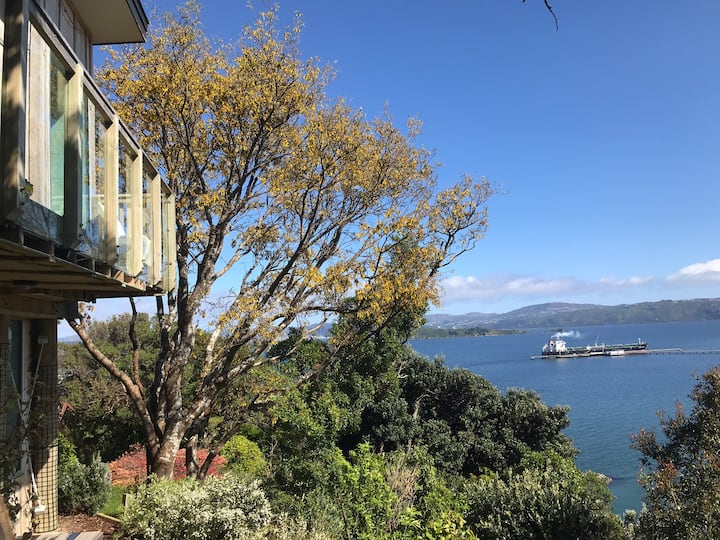 Mini hidden bush studio over looking the harbour