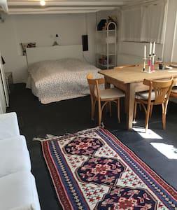 Copenhagen, room with kitchen/bath - Gentofte - House