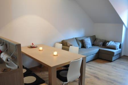 Mansard Apartment Bovec - Bovec
