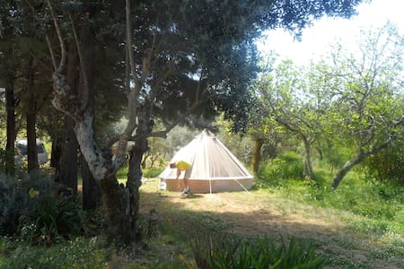 Safari Tent - Redondo Lodges - Tomar