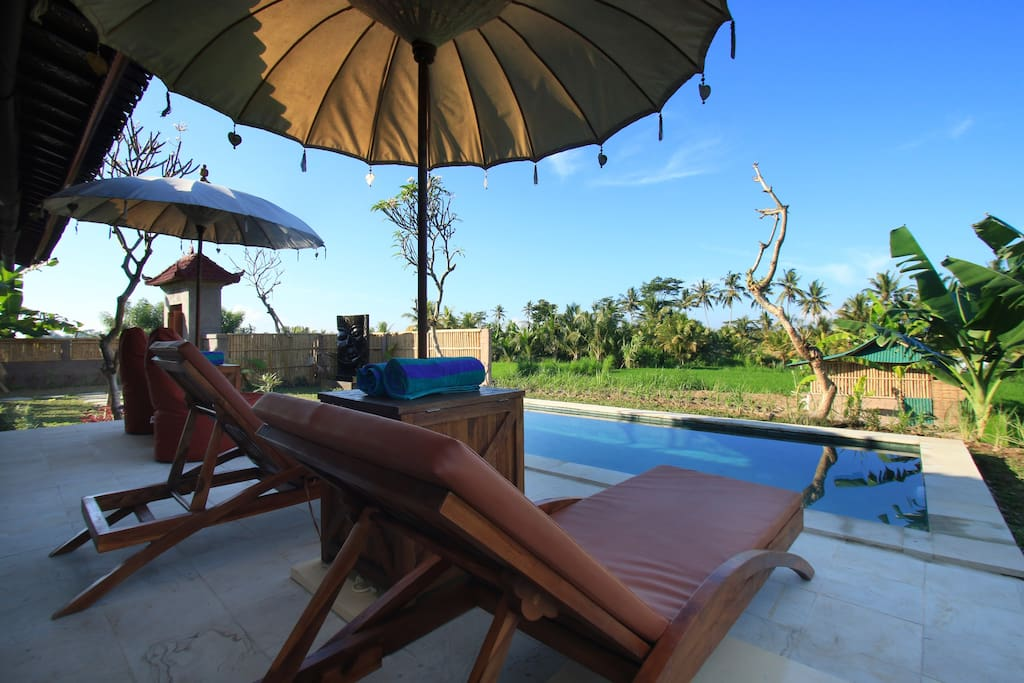 Lounging by the pool, with a view to the rice fields.