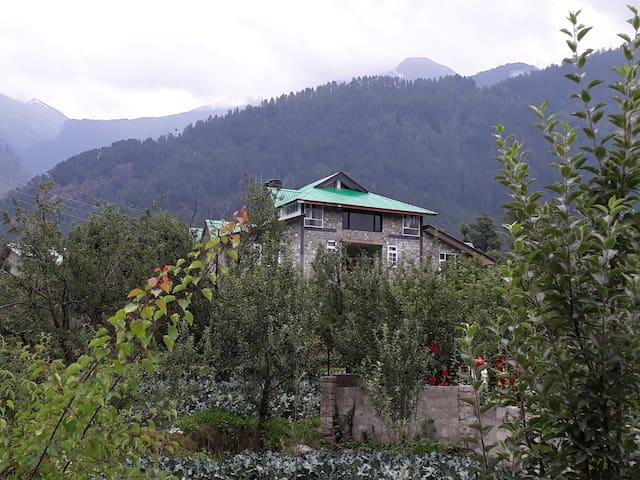 Passion Hut (Brown) @ Manali Home