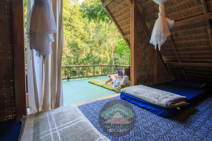 Jungle House Escape