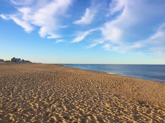 A view from one of the many beaches on Plum Island.