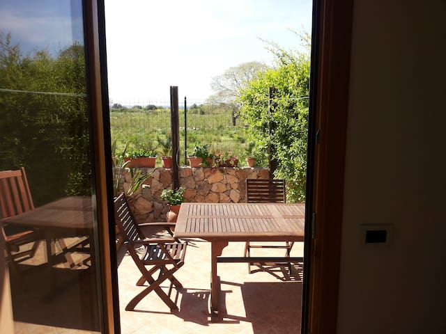 view from the kitchen on the private guest veranda