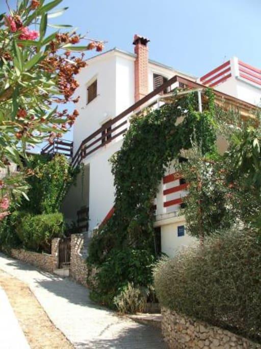 Appartamenti Villa Maslina