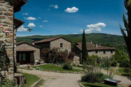 AGRIPOZZO Appartamento MALVA - Arezzo