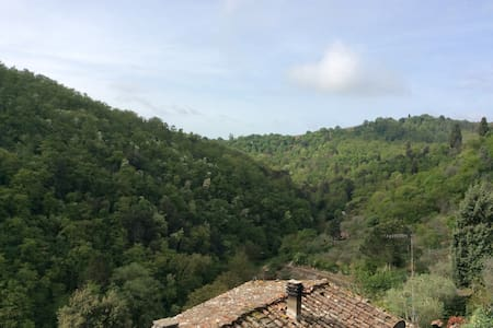 Medieval Tower in Tuscany - Sinalunga - Apartmen