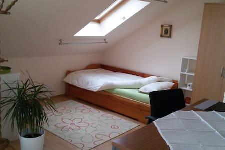 Ruhiges Zimmer mit Sternenblick - Alsdorf - Byt