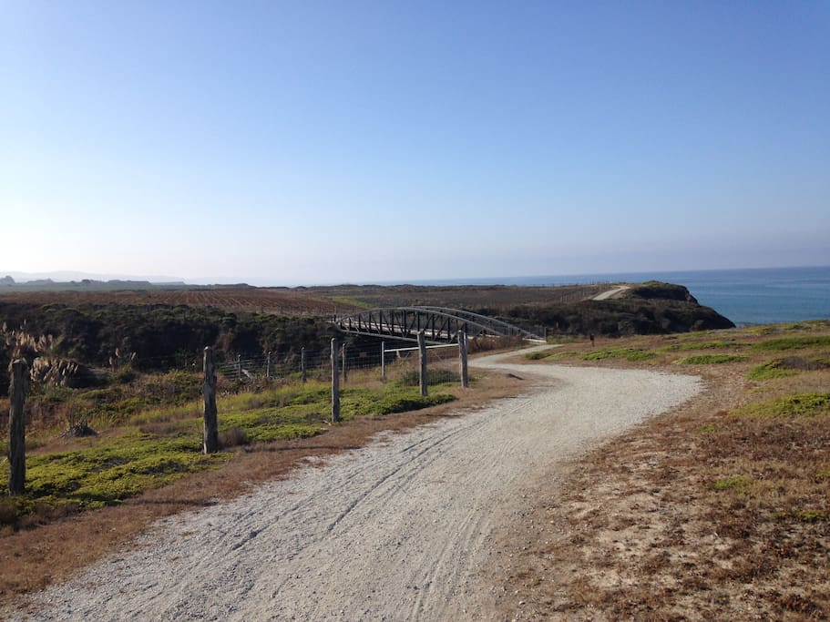 My favorite trail south of our house.  Only open on the weekends.  Park at Cowell Beach.