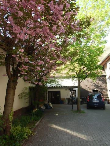 Ferienwohnung Burger - Römerberg-Dudenhofen - Apartment