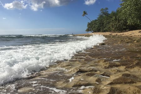 The Beach Bungalow is a super cute, clean, 1BR 1BA central to all that Rincon has to offer. Walk to coffee, BBQ, or organic food on your way to surf or snorkel in crystalline warm water. Then come home and relax to cool breezes and coqui frogs.