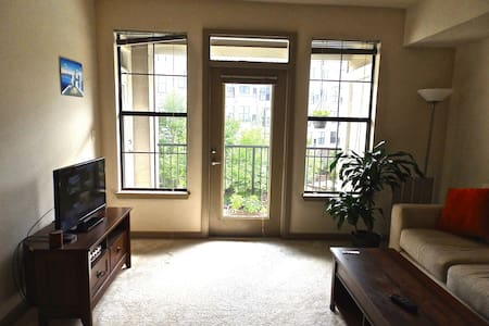 Clean 1 Bedroom Apt - Close to Duke