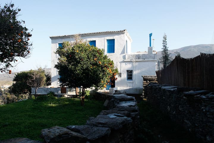 Peaceful Cottage for Nature Lovers - Andros - Talo