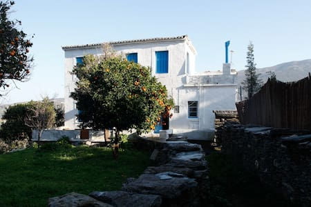 Peaceful Cottage for Nature Lovers - Andros