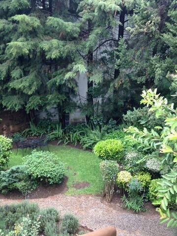 Bello loft en el bosque y fresco - Cuernavaca - Loft