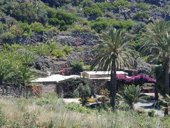 Dammuso a Pantelleria con splendido giardino