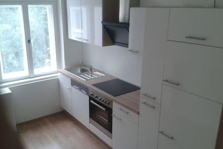neu renovierte 3 Zi Whg. n.DD-Altstadt - Drezno