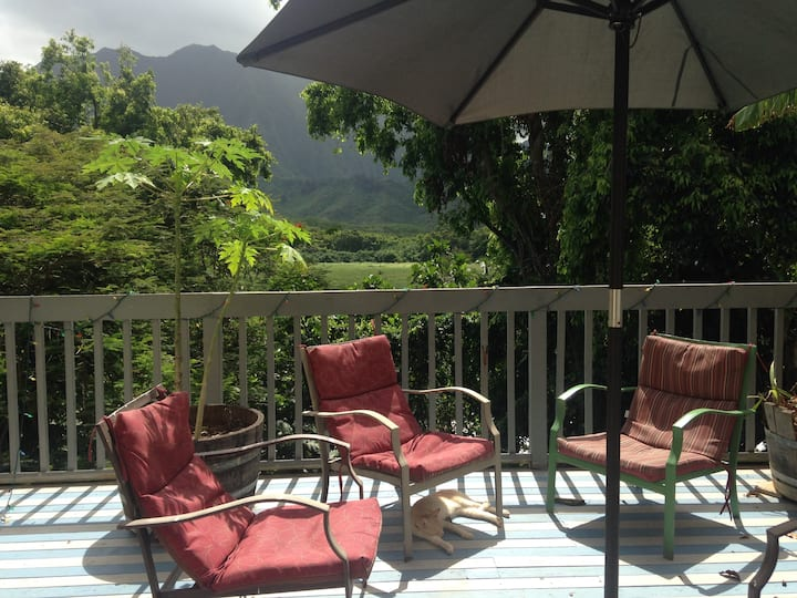 Tropical Kaneohe Home