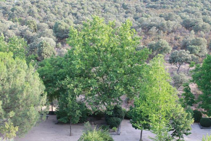 Agradable habitacion con entornos verdes