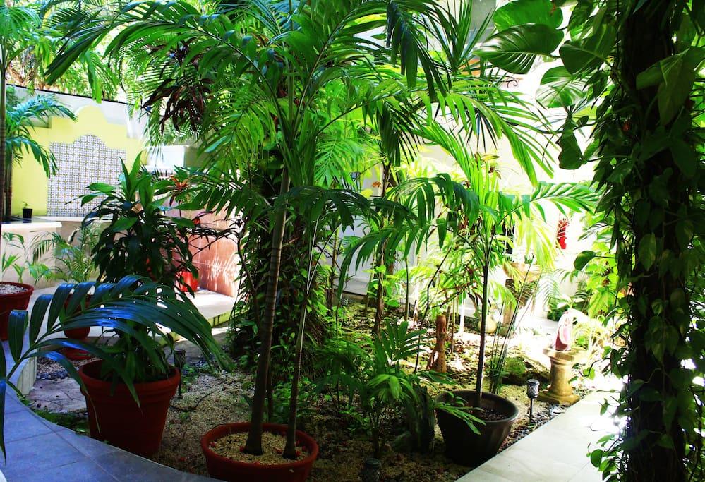 Jardín Central Maya Suites