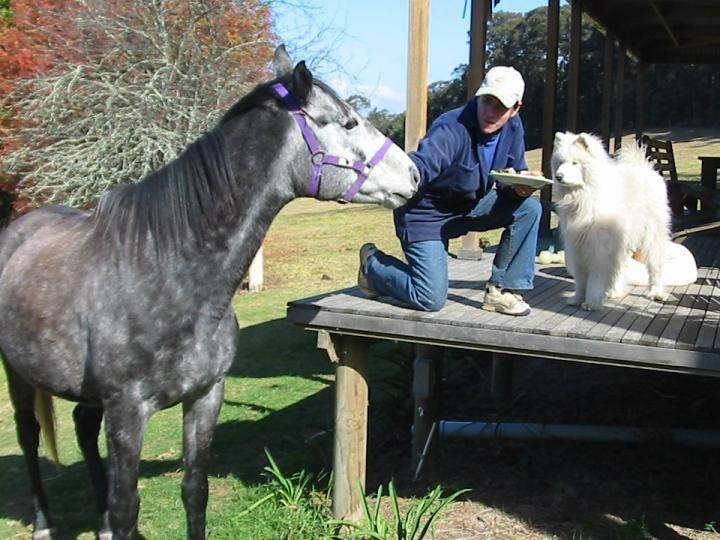 Farmstay Kangaroo Valley Australia