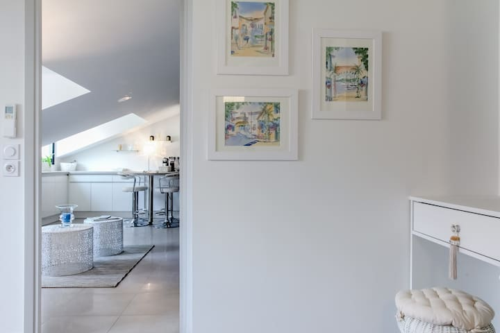 CHARMING CANNES CITY CENTER FLAT