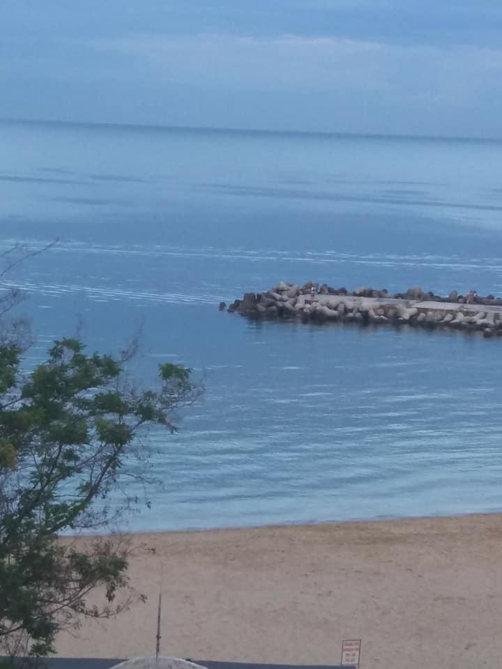 Ваканционни къщи на брега на морето.Лятна почивка.