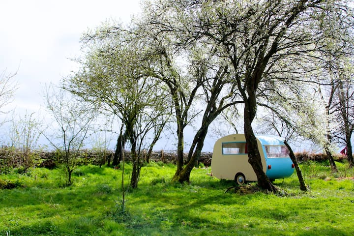 Cosy caravan & traditional sauna - Saint-Maurice-sur-Aveyron - Outros