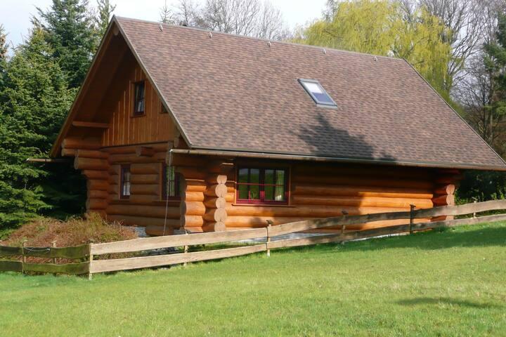 Cozy Cabin in Waltershausen near Forest