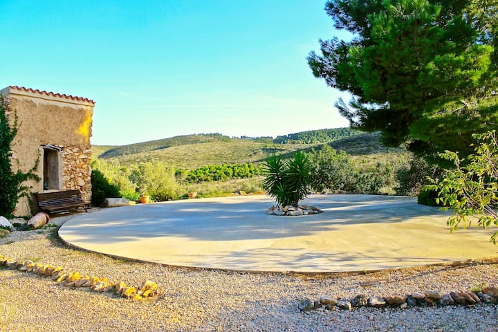 The stone house sits at the edge of our olive farm