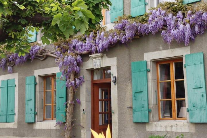 Vieux-College, stylish villageoise apartment.