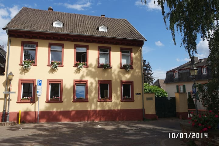Offene Lux. Ferienwohnung - Geisenheim - Apartment