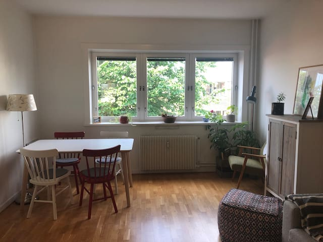 Central and cozy apartment