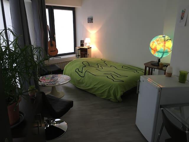 Chambre en centre ville - Annecy - Apartment