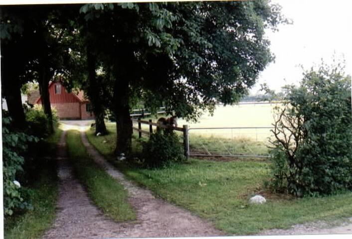 Eget hus på liten gård strax utanför Lund.