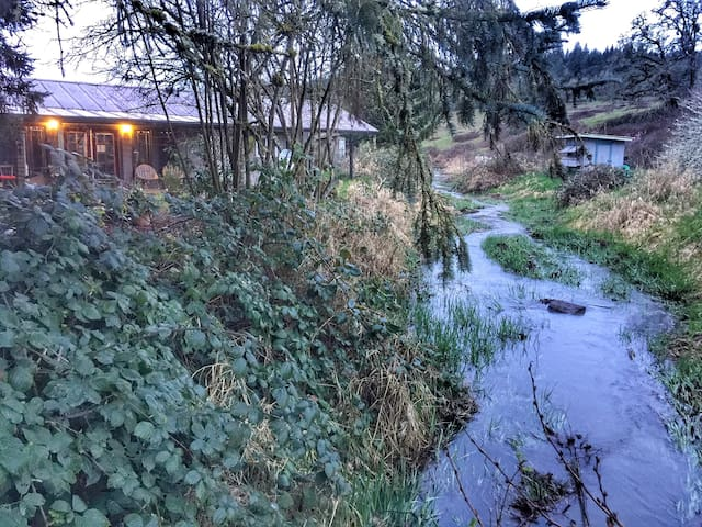 Enjoy the trickling and splashing Millrace water as it runs by the airbnb most of the year. In the 1800's it powered a woolen mill nearby in Brownsville. The mill was moved to Pendleton Oregon and still produces beautiful blankets & clothing today.