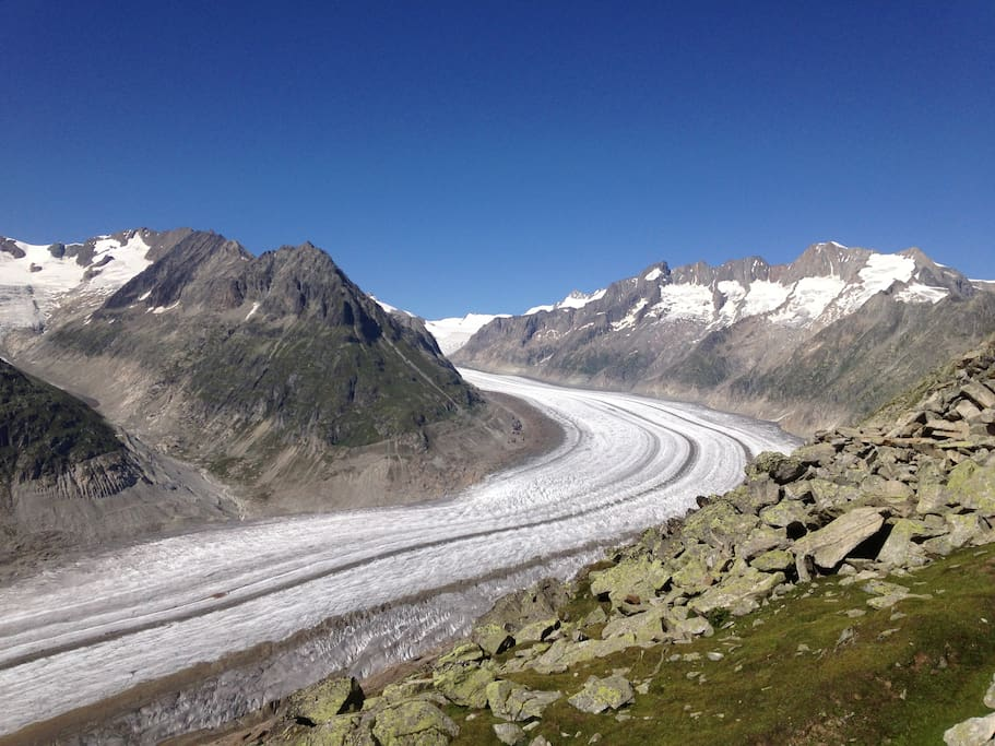 The Aletsch glacier largest one in Europe!